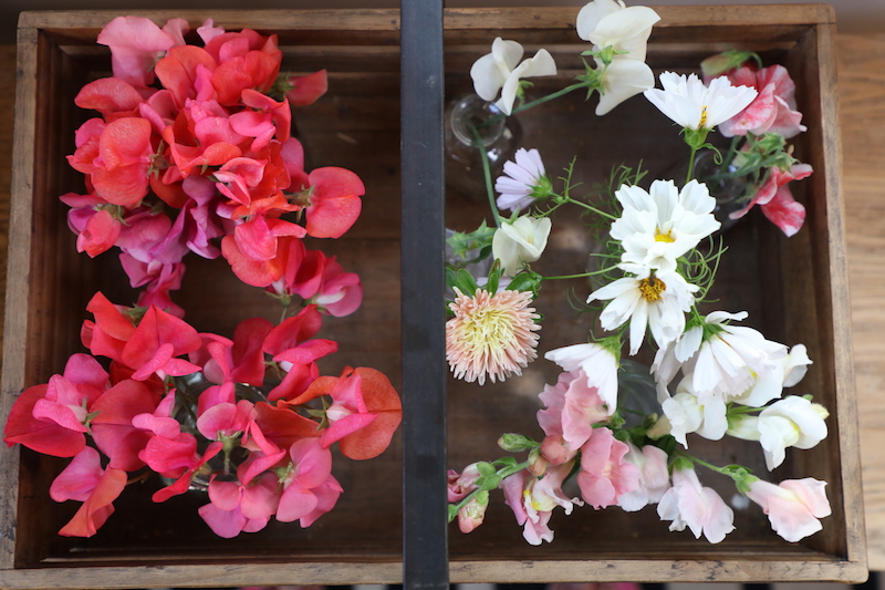 cut flowers in September in a wooden rug